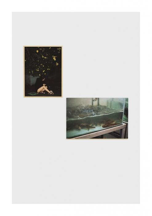 http://melissaboucher.fr/files/gimgs/th-20_fille-fish.jpg